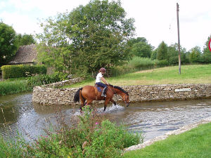 Horse in the river at Lower Slaughter
